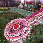 flower show1 copy