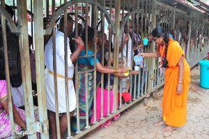 SRIVARI SEVAKS SERVING WATER