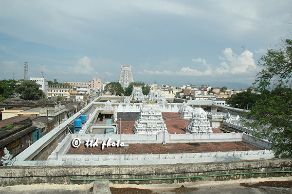 Sri Govinda raja Swamy Temple (2)