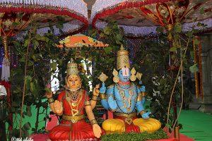 Aswatha Vishnu Rupa Puja