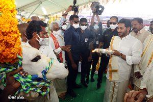 AP CM TAKES PART IN KAMADHENU GOPUJA HELD AT NARASARAO PET