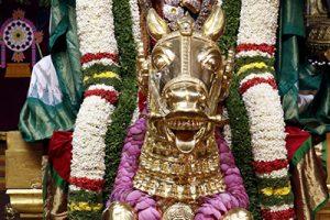 padmavathi parinayanam7