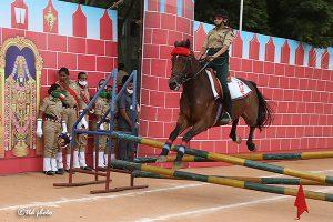 HORSE SHOW1
